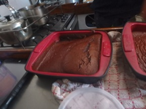 and Linda's first cake attempt.