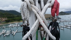 Spin halyards both fixed and in place ready to go at top of mast