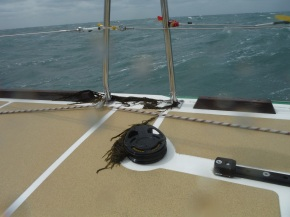 And seaweed left behind form being blown over the side