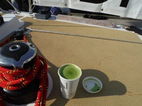 No Chai Lattes in Qingdao! But they do have Green Tea Lattes.