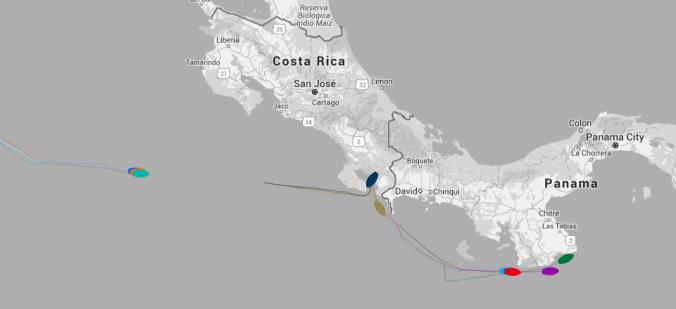 Clipper_2015-16_Race_Standings_Panama