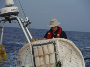 John hard at work on the helm. Making sure he is doing the correct wind direction or course over ground