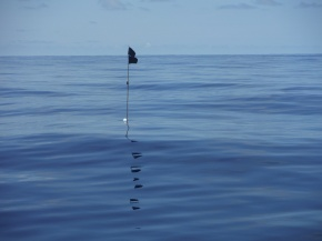 Marker for a fishing net out in the middle of the ocean