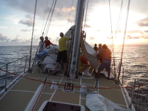 Everyone now in the act! Except me as I was up the mast earlier to repair and replace the spinnaker block.