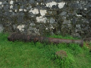 Real old rusty canons.